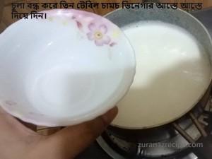 homemade channa/paneer/ricotta cheese