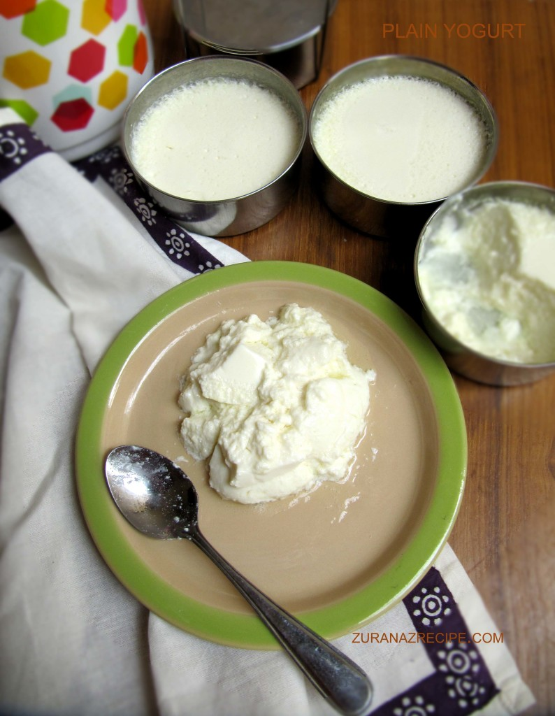 plain yogurt-zuranazrecipe.com.